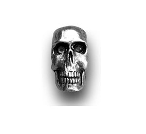 Photo1: Air Cleaner Nuts: Chrome Skull