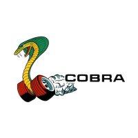 HOT ROD Sticker COBRA Window Decal