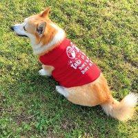 Take it Easy Doggie T-shirt